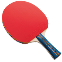 Butterfly Stayer 2000 Racket