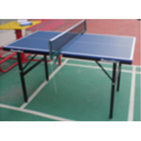 TTW Mini Table Tennis Table